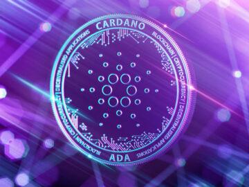 COTI centa una nueva moneda estable Cardano llamada Djed